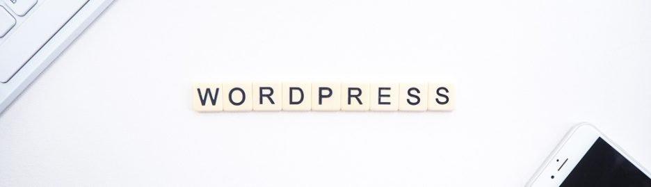 Een WordPress website updaten 3